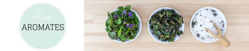 Le Jardin des Simples | Aromates